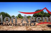 TV026, Terrain de 4000 m² à vendre à Bayakh Dakar