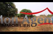TV027, Terrain de 3hectare en vente à Bayakh Dakar